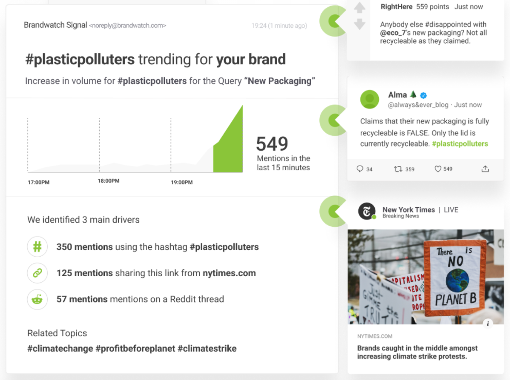 11. Brandwatch - picture 2