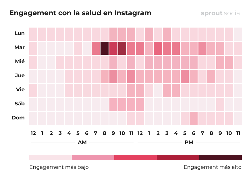 Mejores momentos para publicar en Instagram para el sector de la salud
