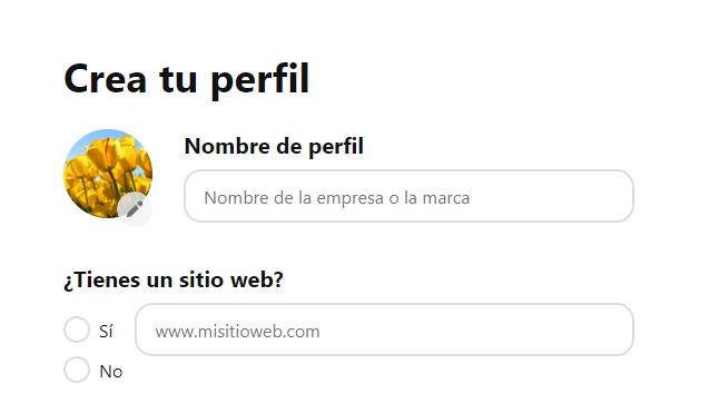 ¿Cómo crear una página de empresa en Pinterest? - imagen 3