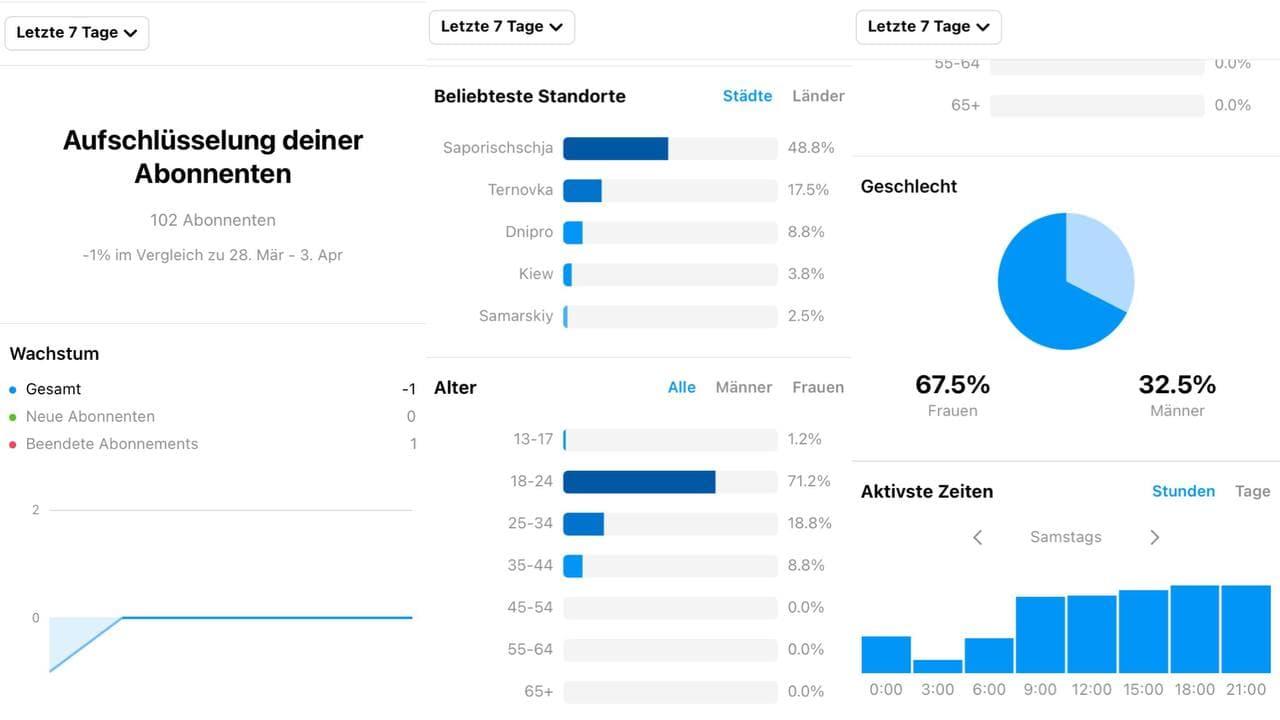 Publikumsanalysen